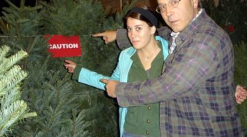 WARNING: Christmas Tree Mold Is Real! 4 Ways To Prevent Christmas Tree Allergies