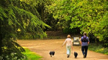 The Dog-Walking Diet: Walk Your Dog… Lose Weight!