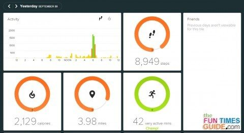 My Fitbit Flex review with tips for using Fitbit without a phone