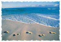 footprints-ont-the-beach.jpg