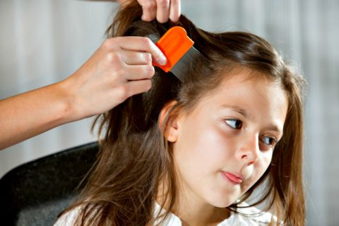 head lice removal isn't a hard process but it does take time