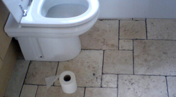 News Flash: Toilet Seats Aren't That Dirty! Things That Are Dirtier Than Toilet Seats