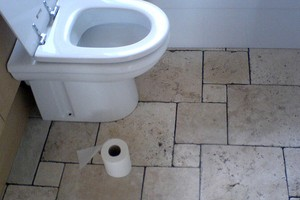 toilet-seat-and-toilet-paper-by-rileyroxx.jpg