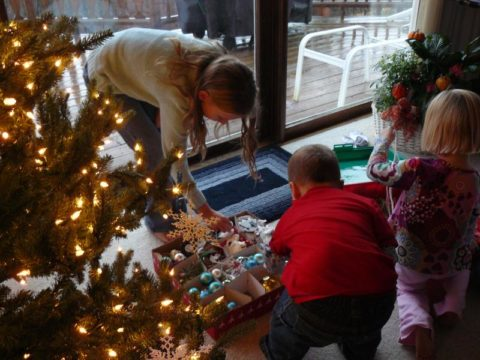 gathering around the Christmas tree can cause tree allergies for some